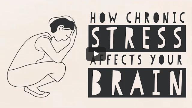 Hoe chronische stress onze hersenen verandert