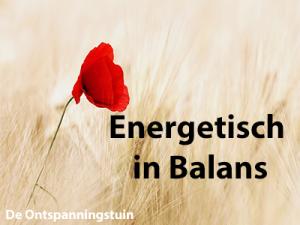 cursus energetisch in balans