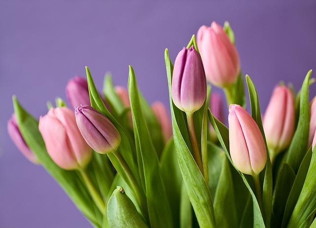 geef jezelf een bos bloemen