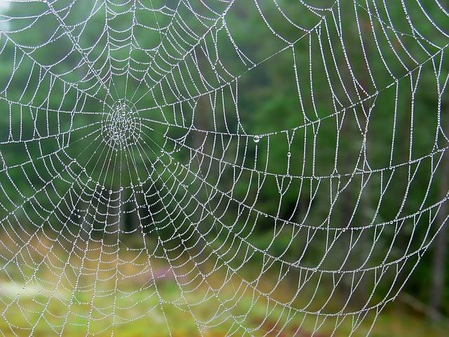 betekenis spin spiritueel