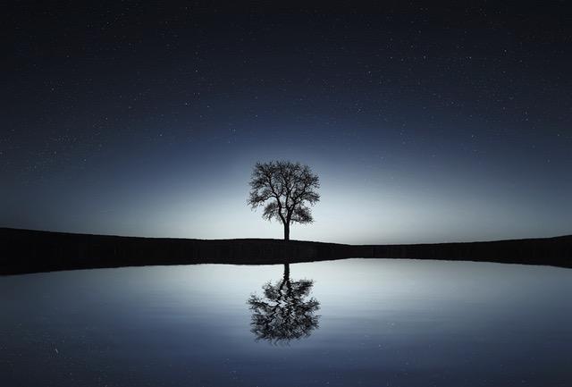 Dromen Over Geesten Ontspanningstuin