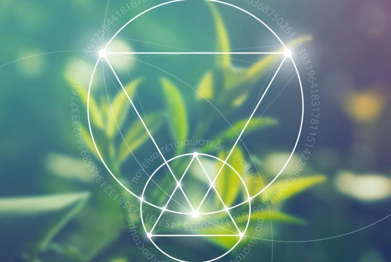 de engel thahamiël