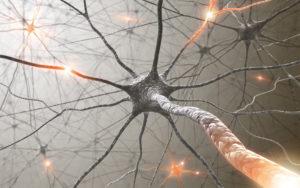onrust in je hoofd tegengaan hersenen