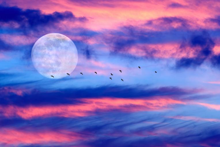 De volle maan van 2020