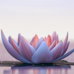 spiritualiteit en spirituele ontwikkeling - bewustzijn