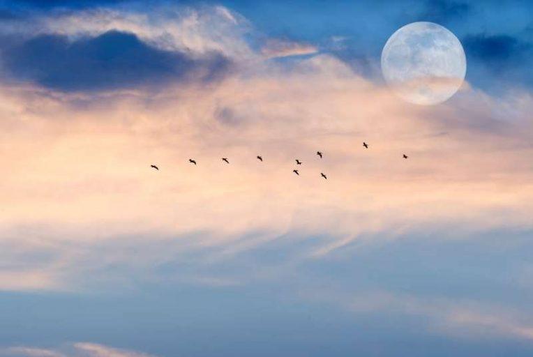 volle maan van maart 2021